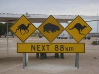 Australia 60