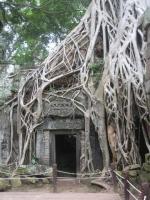 086 Cambodia