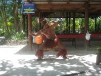 083 Cook Islands