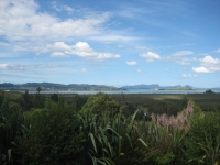 010 New Zealand